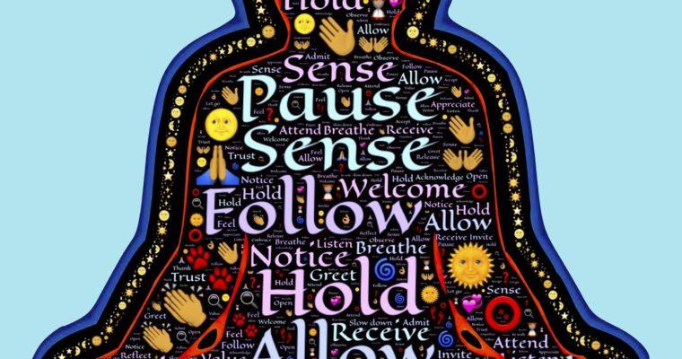 Heartfulness Meditation at Peace Tree's Open House