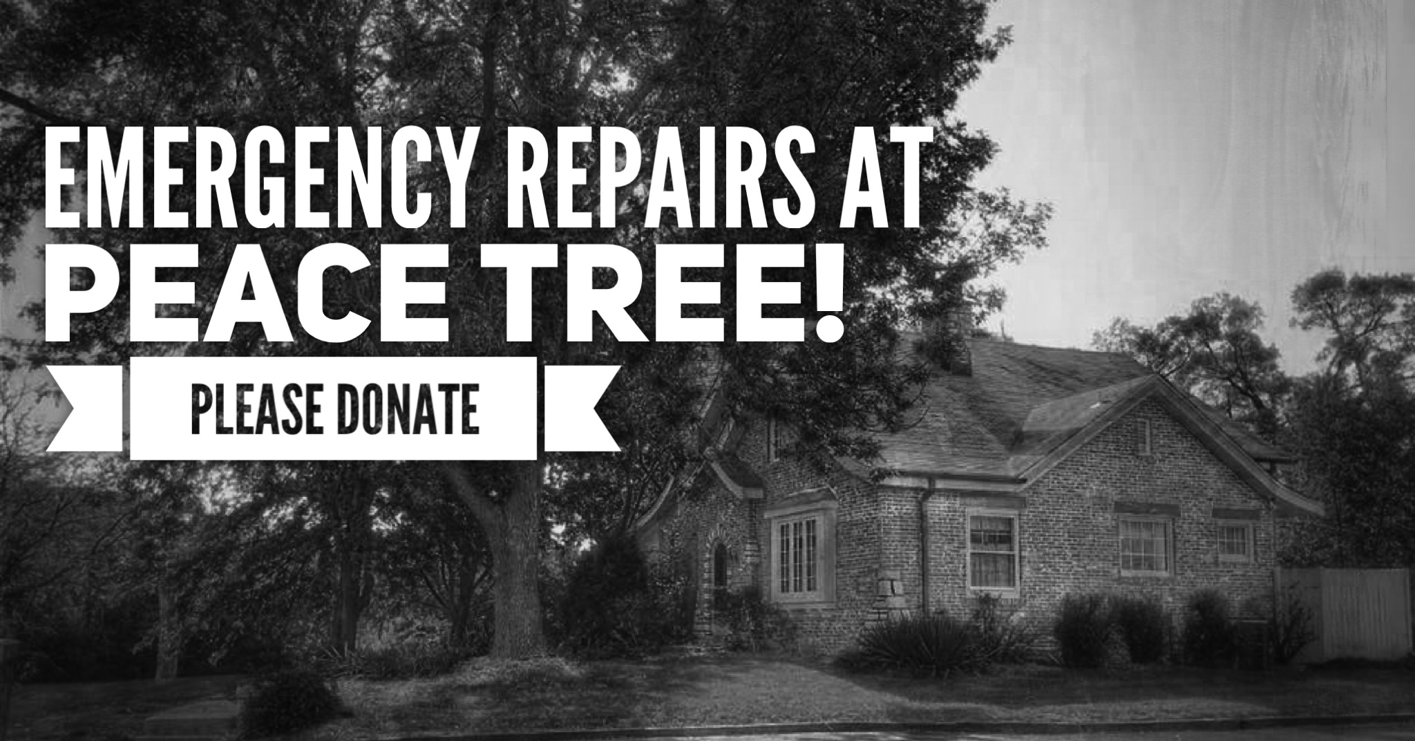 Emergency Repairs at Peace Tree – please donate